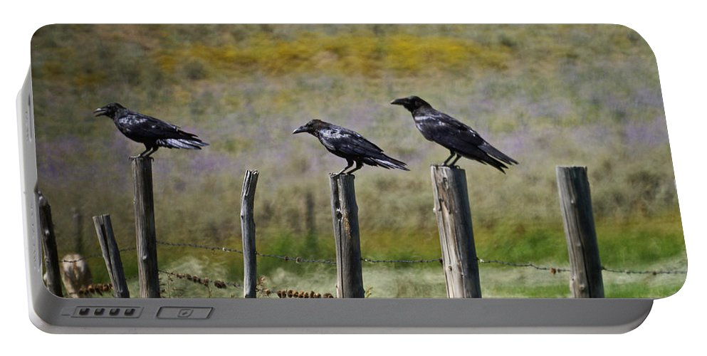 Crows Portable Battery Charger featuring the photograph Neighborhood Watch Crows by Heather Coen