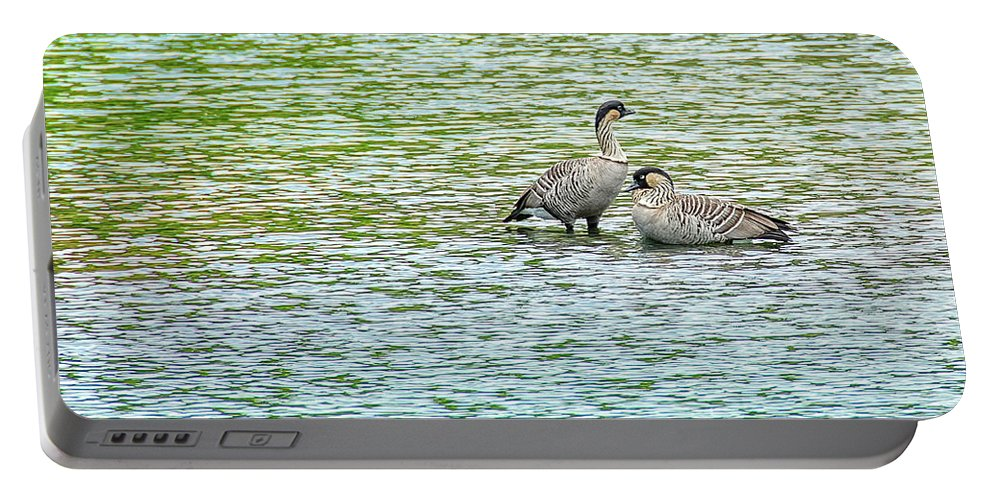 Nene Portable Battery Charger featuring the photograph Nene Water Wings by David Lawson