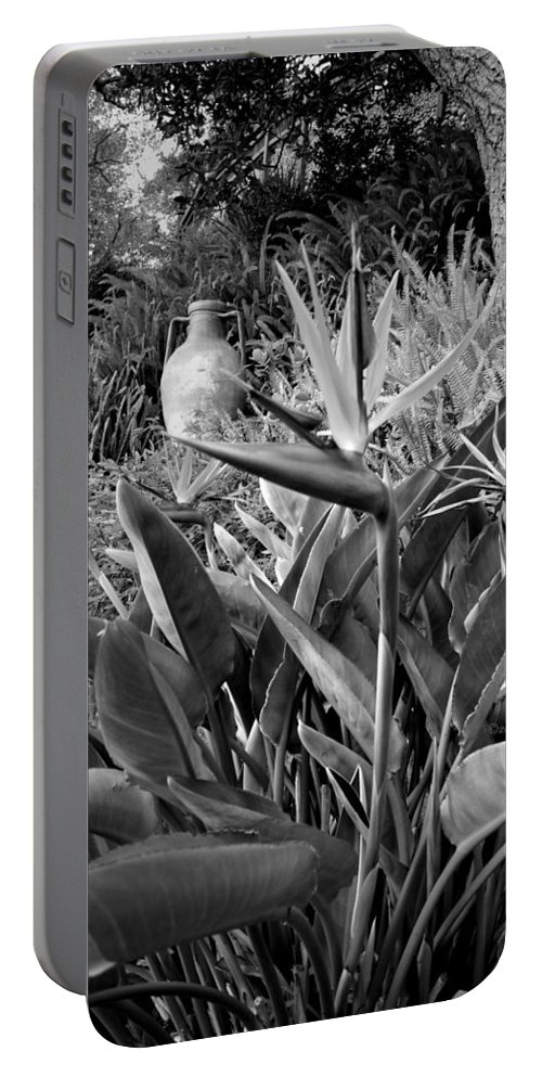 Big-sur Portable Battery Charger featuring the photograph Nepenthe Bird Of Paradise B And W by Joyce Dickens