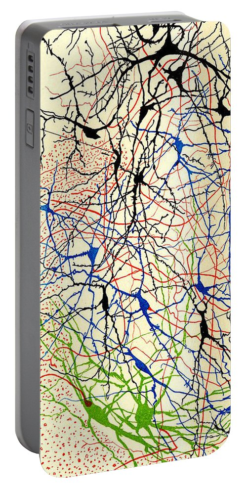 History Portable Battery Charger featuring the photograph Nerve Cells Santiago Ramon Y Cajal by Science Source