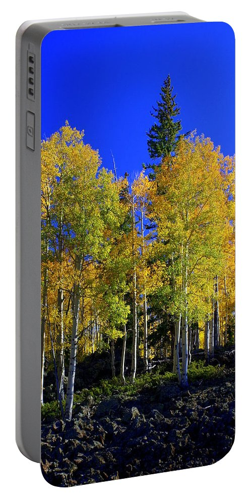 Fall Colors Portable Battery Charger featuring the photograph Nevada Fall by Marty Koch