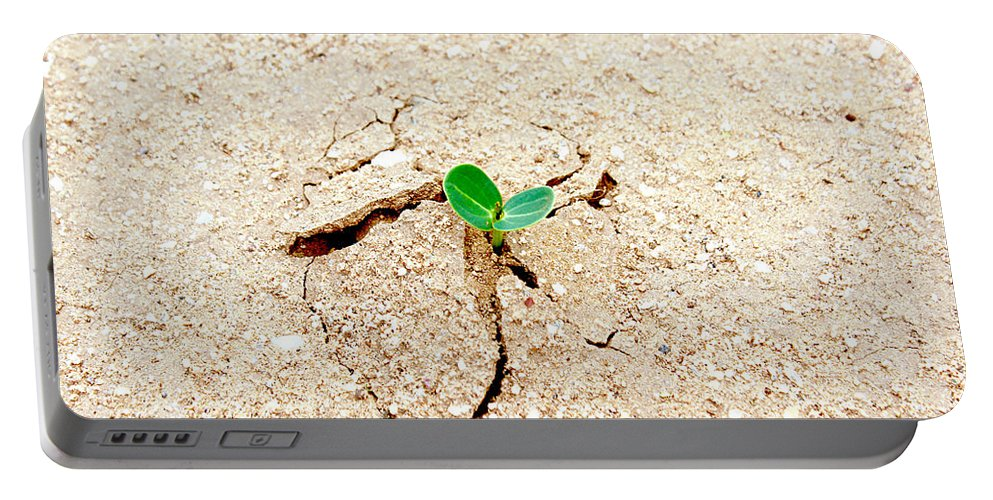 New Beginning Portable Battery Charger featuring the photograph New Beginning by Kume Bryant