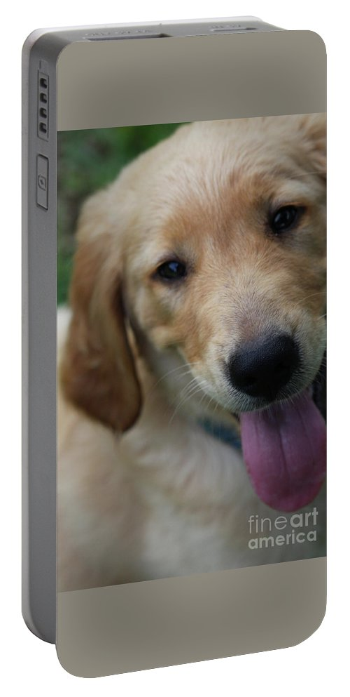 Golden Retreiver Portable Battery Charger featuring the photograph New Love by Kim Henderson