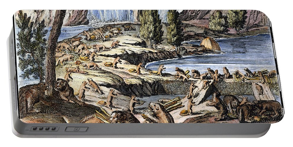 1715 Portable Battery Charger featuring the photograph Niagara Falls: Beavers, 1715 by Granger