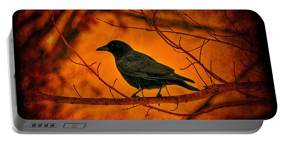 Bird Portable Battery Charger featuring the photograph Night Guard by Evelina Kremsdorf
