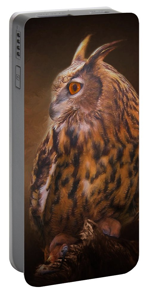 Animals Portable Battery Charger featuring the photograph Night Owl by David and Carol Kelly