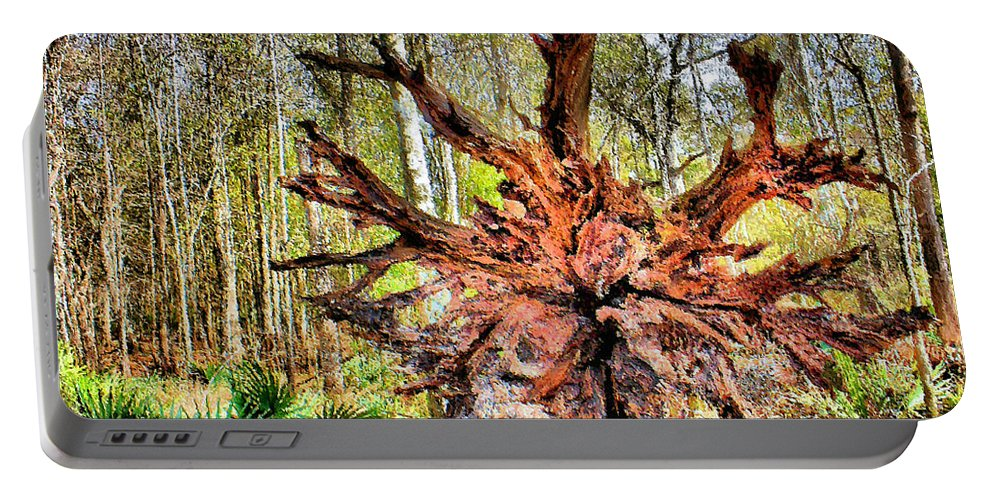 Cypress Tree Portable Battery Charger featuring the photograph No More Knees by Kristin Elmquist