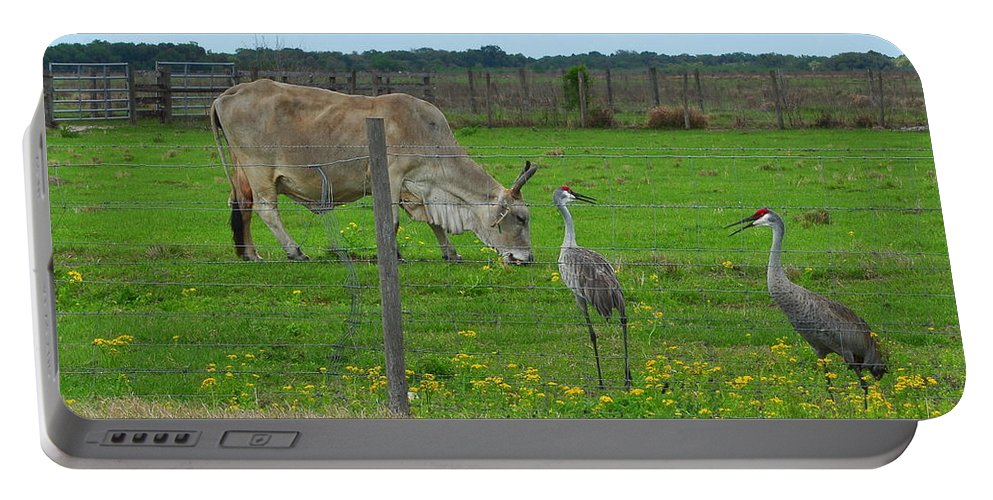 Sandhill Cranes Portable Battery Charger featuring the photograph No You Tell Her 2 by Amy Spear