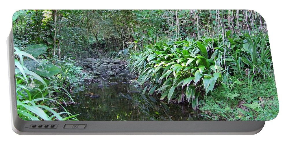 Mary Deal Portable Battery Charger featuring the photograph North Shore Forest Glade by Mary Deal