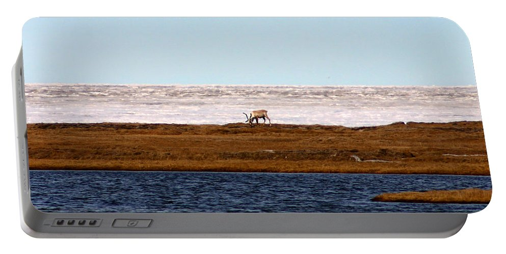 Arctic Portable Battery Charger featuring the photograph North Slope by Anthony Jones