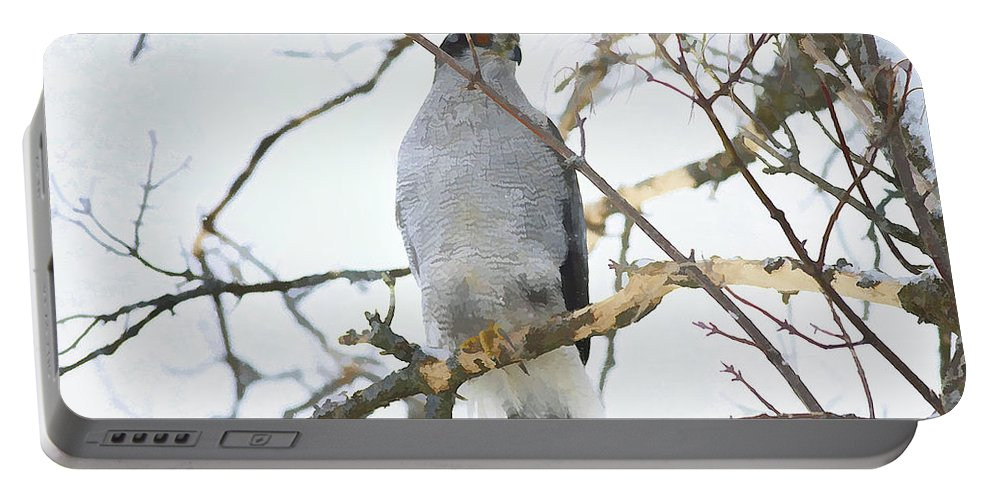 Portable Battery Charger featuring the photograph Northern Goshawk by Deborah Benoit