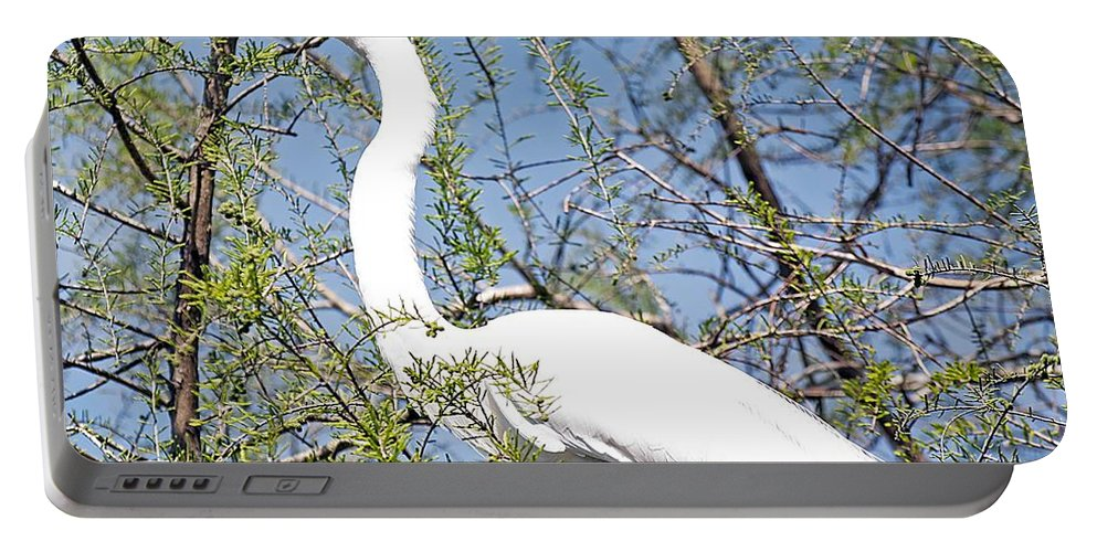 Egret Portable Battery Charger featuring the photograph Not So Little After All by Kenneth Albin