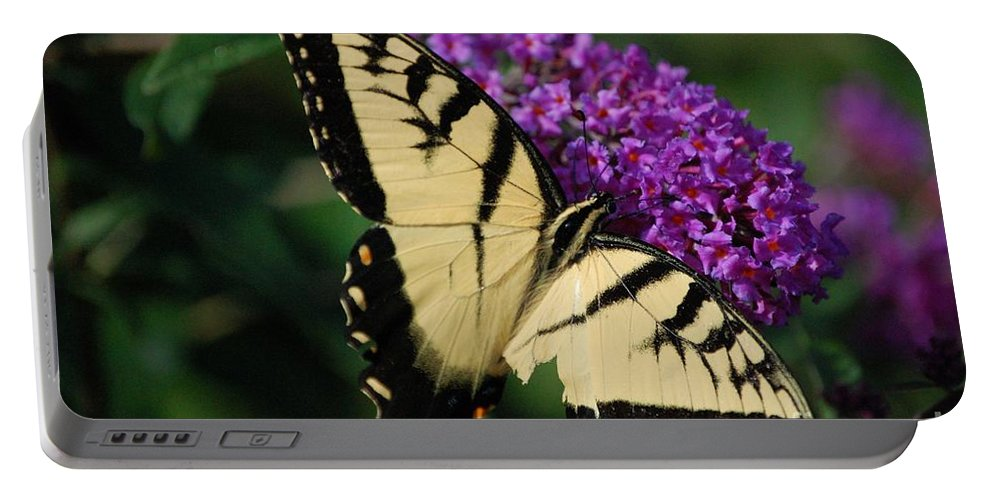 Butterfly Portable Battery Charger featuring the photograph Nothing Is Perfect by Debbi Granruth