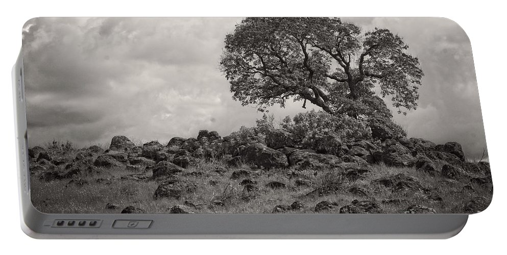 Oak Portable Battery Charger featuring the photograph Oak In Rock Field by Jim And Emily Bush