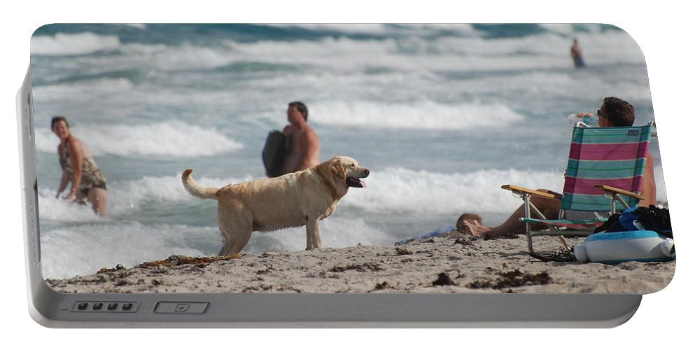Waves Portable Battery Charger featuring the photograph Ocean Dog by Rob Hans