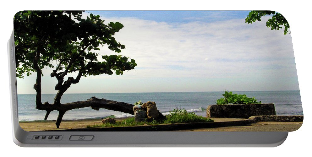 Tree Portable Battery Charger featuring the photograph Ocean Formed Tree by Douglas Barnett