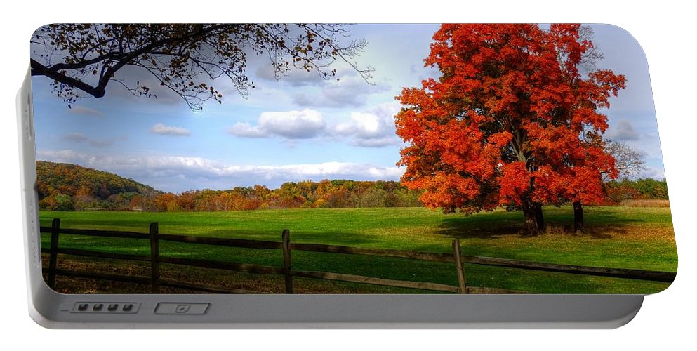 Autumn Portable Battery Charger featuring the photograph Oh Beautiful Tree by Ronda Ryan