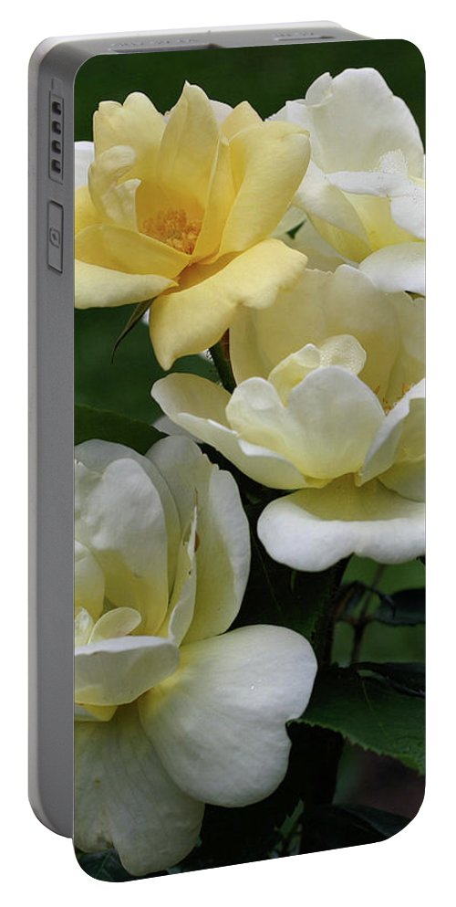 Flower Portable Battery Charger featuring the photograph Oh So Pretty Roses by Smilin Eyes Treasures