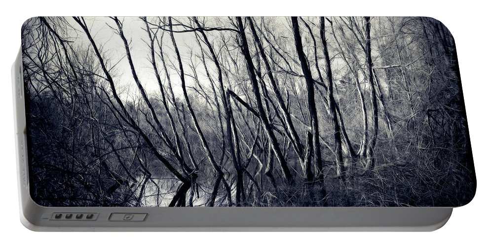 Ohio Portable Battery Charger featuring the photograph Ohio Metro Pond by Joan Minchak