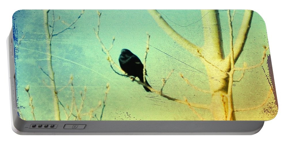 Blackbird Portable Battery Charger featuring the photograph Old Crow Medicine Show by Bill Cannon