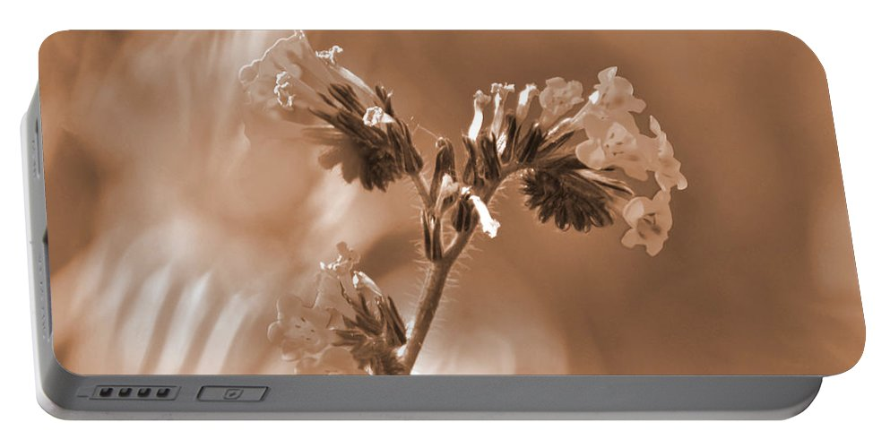 Old Fashioned Portable Battery Charger featuring the photograph Old Fashioned Wild Flowers by Debby Pueschel