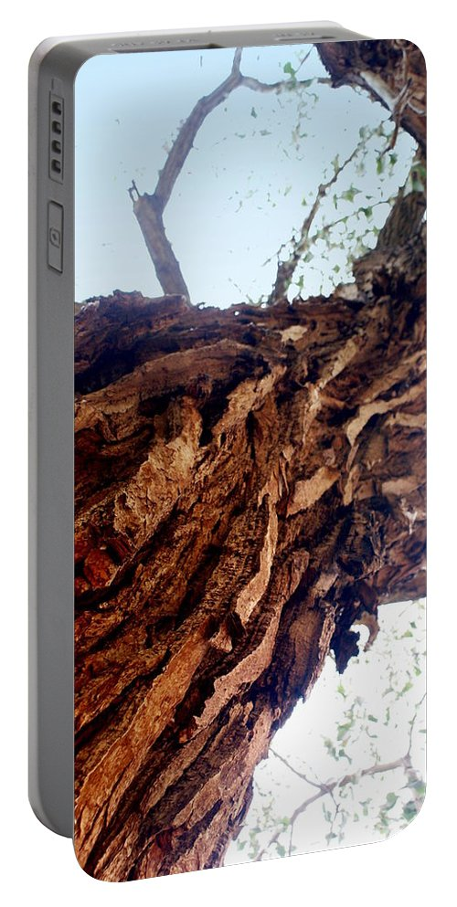 Tree Portable Battery Charger featuring the photograph Old Tree by Marty Koch