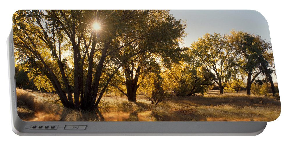 Ftrees Portable Battery Charger featuring the photograph Oliver Sunbursts by Jerry McElroy