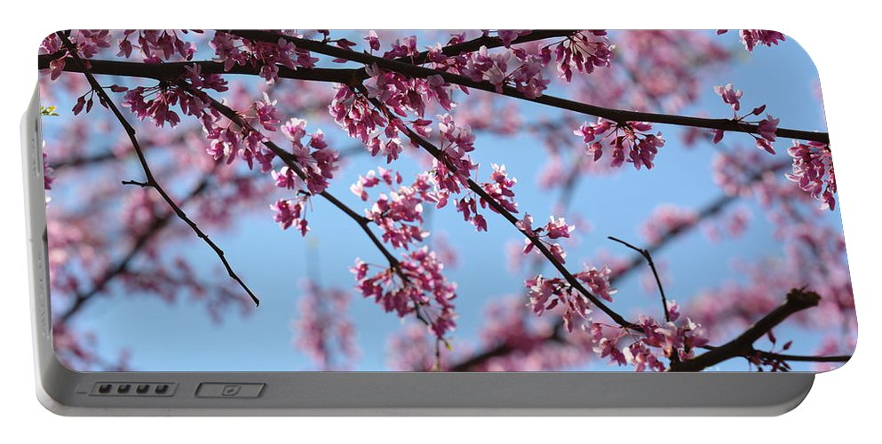 On A Spring Morning Portable Battery Charger featuring the photograph On A Spring Morning by Maria Urso