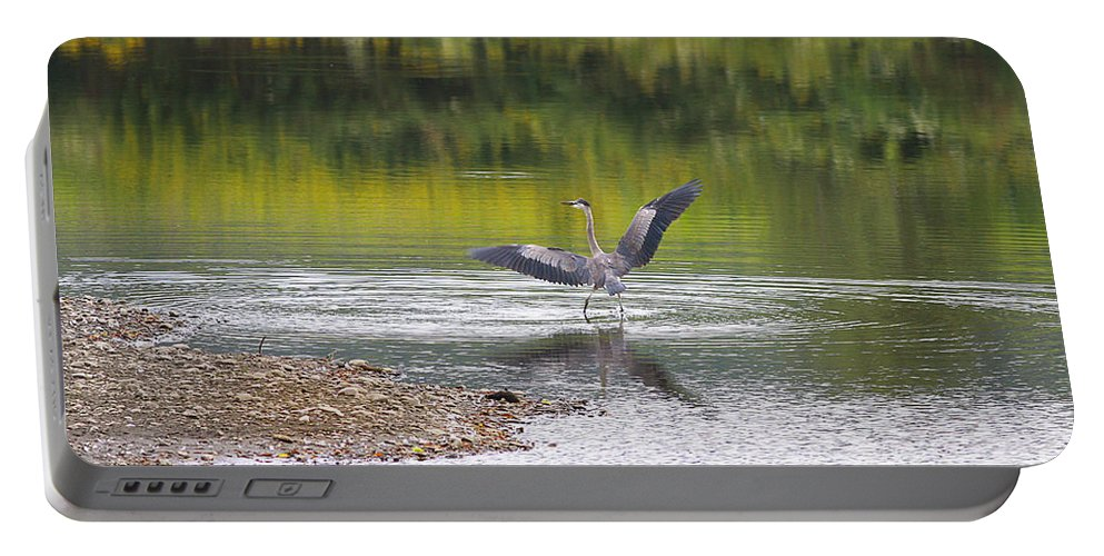 Heron Portable Battery Charger featuring the photograph On A Stroll In The River by Deborah Benoit