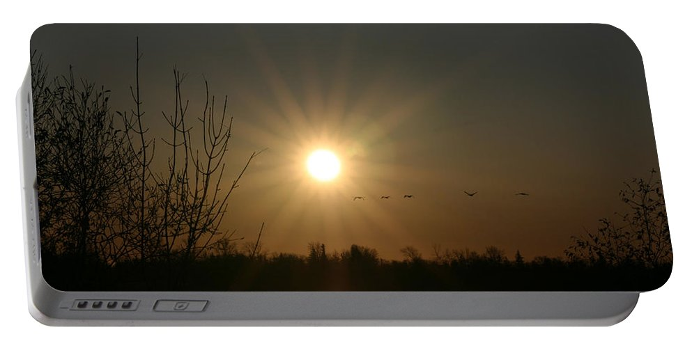 Geese Water Lake Ice Trees Nature Sunrise Sun Cold Morning Ducks Birds Portable Battery Charger featuring the photograph On Frozen Pond by Andrea Lawrence