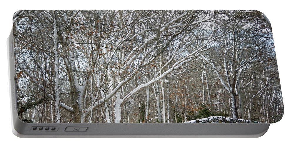 Winter Portable Battery Charger featuring the photograph On The Road To Woods Hole by Mother Nature