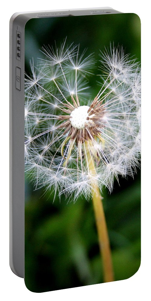 Dandylion Portable Battery Charger featuring the photograph One Dandy Lion by Chris Brannen