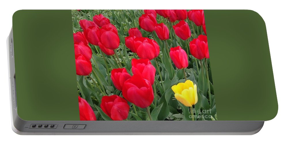 Tulips Floral Spring Red Yellow Green Flowers Photograph Original By Breena Briggeman Nature Garden Portable Battery Charger featuring the photograph One Of The Bunch by Breena Briggeman