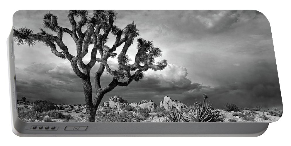 Joshua Tree Portable Battery Charger featuring the photograph One Tree Hill by Virginia Dickens