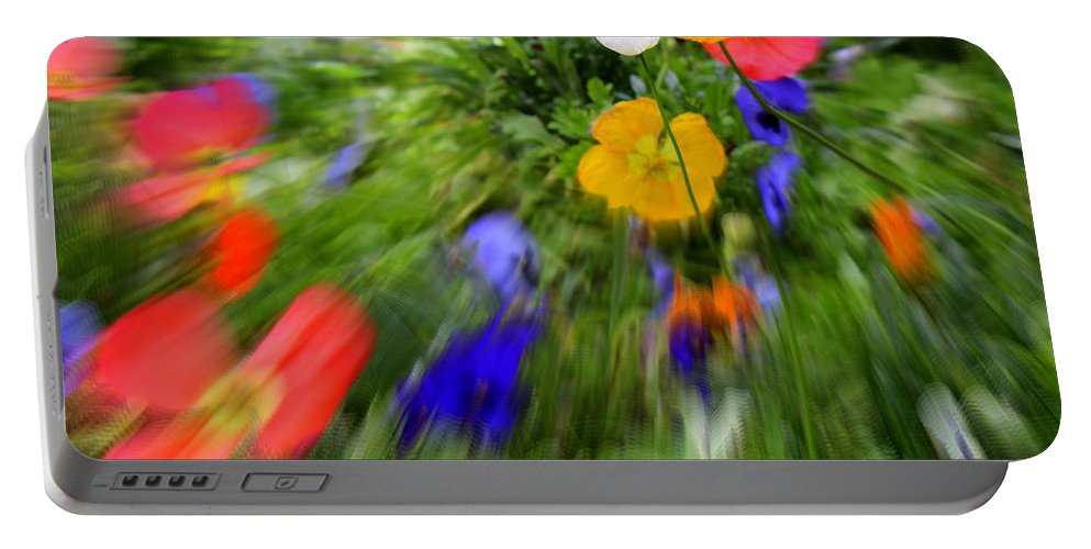 Flower Portable Battery Charger featuring the photograph One Beautiful White Flower by Fiona Kennard