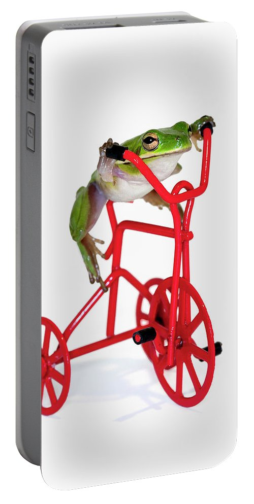 Frog Portable Battery Charger featuring the photograph Only 3 More Miles by Janet Fikar