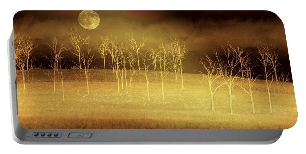 Landscapes Portable Battery Charger featuring the photograph Only At Night by Holly Kempe