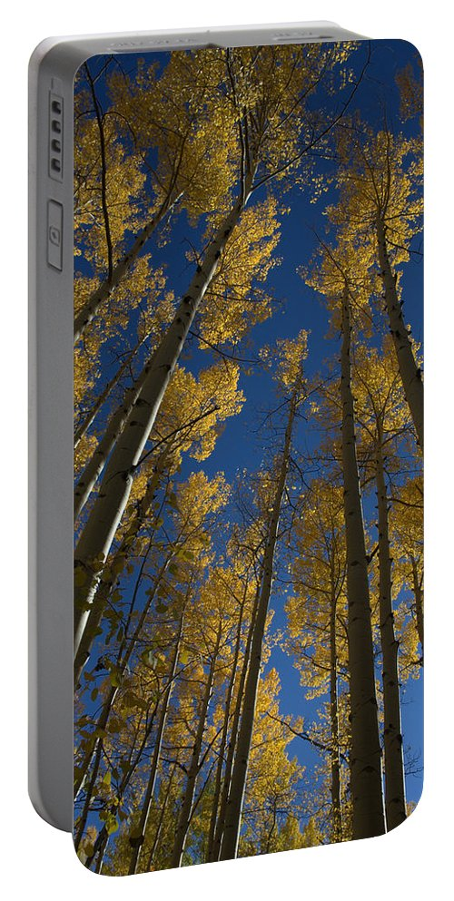 Fall Portable Battery Charger featuring the photograph Onward Toward The Sky by Jerry McElroy
