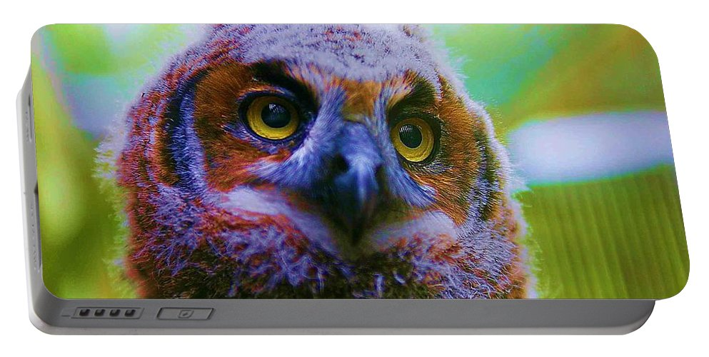 Owl Portable Battery Charger featuring the photograph Opalescent Owl by Nelson Strong