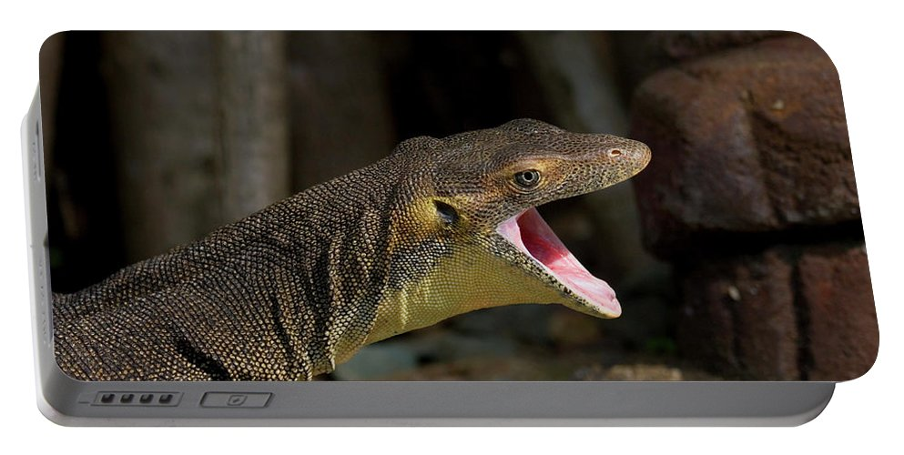 Water Monitor Portable Battery Charger featuring the photograph Open Wide by Mike Dawson