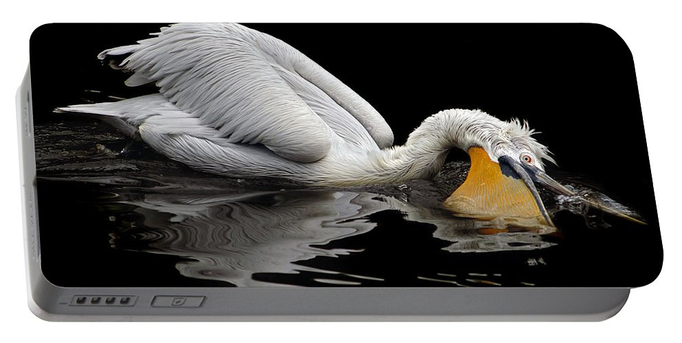 Ddalmatian Pelican Portable Battery Charger featuring the photograph Oral Hygiene by Michal Boubin