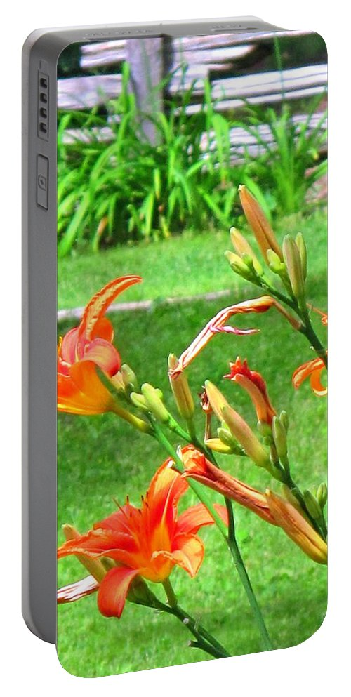 Lilly Portable Battery Charger featuring the photograph Orange And Green by Ian MacDonald