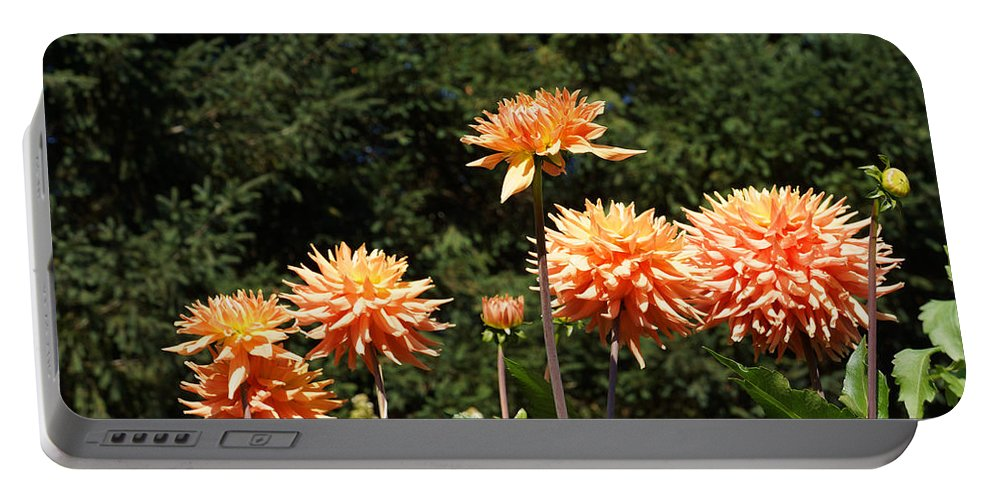 Green Portable Battery Charger featuring the photograph Orange Dahlia Flower Garden Art Prints by Patti Baslee