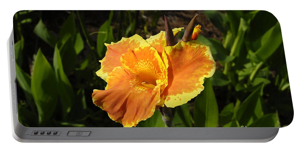 Flower Portable Battery Charger featuring the photograph Orange Flower by David Lee Thompson