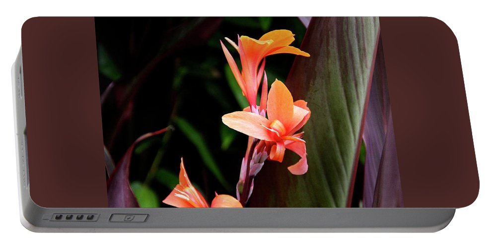Floral Portable Battery Charger featuring the photograph Orange Gladiolus by Gene Parks