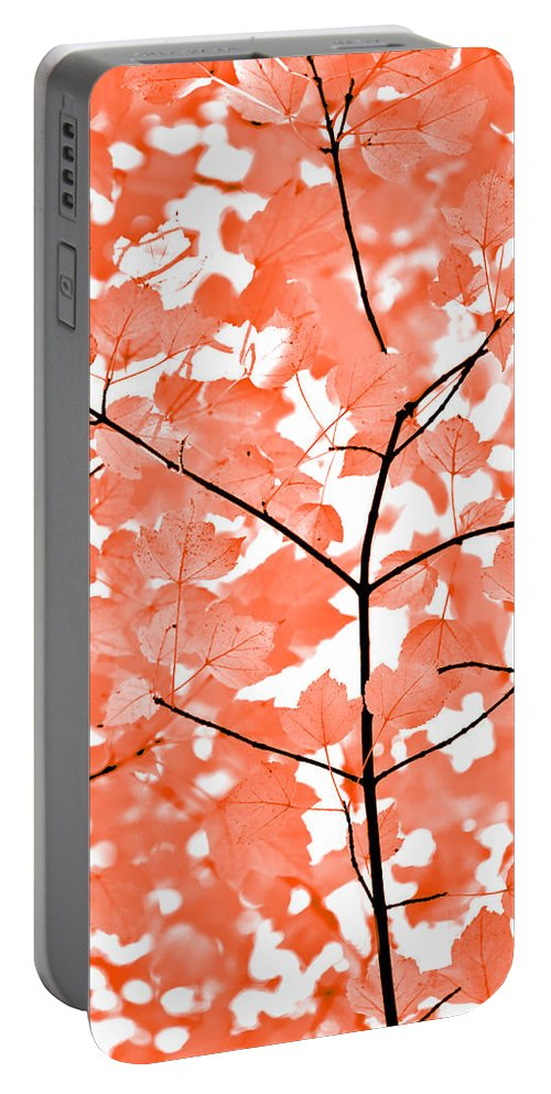 Leaf Portable Battery Charger featuring the photograph Orange Leaves Melody by Jennie Marie Schell
