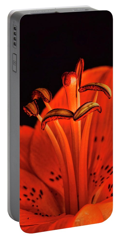 Lilly Portable Battery Charger featuring the photograph Orange Lilly by Saija Lehtonen