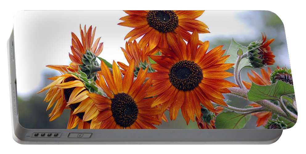 Sunflower Portable Battery Charger featuring the photograph Orange Sunflower 1 by Amy Fose