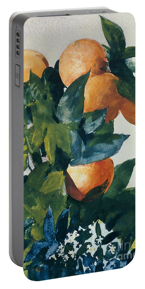 Oranges On A Branch Portable Battery Charger featuring the painting Oranges On A Branch by Winslow Homer