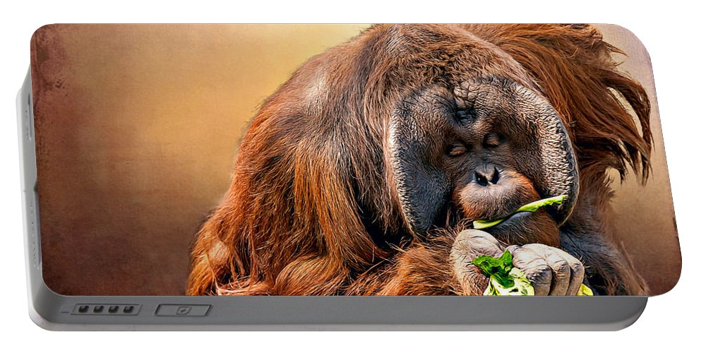 Animal Portable Battery Charger featuring the photograph Orangutan by Maria Coulson
